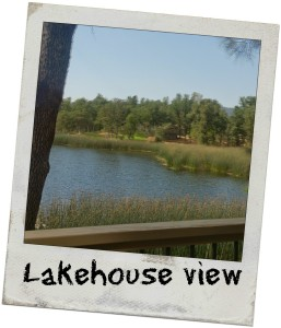 AirBnB Lakehouse Sonora